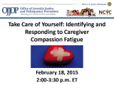 Highlights from Webinar on Avoiding Compassion Fatigue